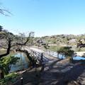 Photos: 観心橋と三重塔