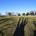 Photos: 野毛山公園