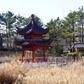Photos: 中国庭園