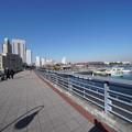 Photos: 開港の道