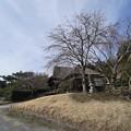 Photos: 冬の鶴翔閣