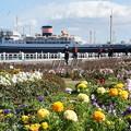 Photos: 花壇と氷川丸