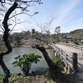 Photos: 観心橋