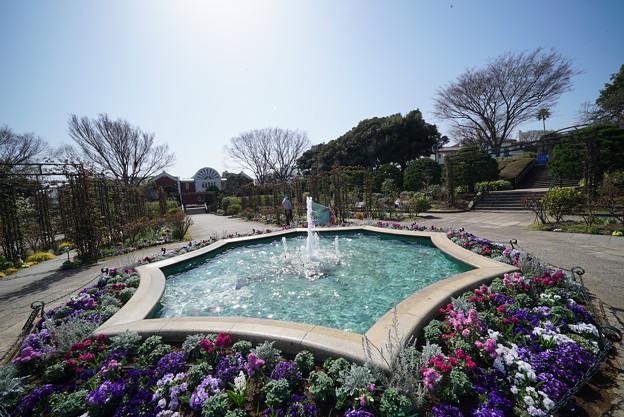 Photos: 港の見える丘公園の噴水