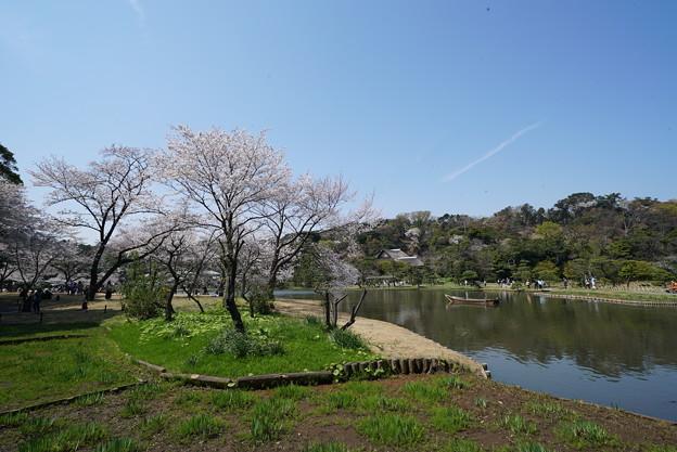 早春の三渓園