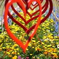 ハートの花壇