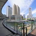 横浜市役所からのMM
