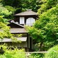 Photos: 初夏の聴秋閣