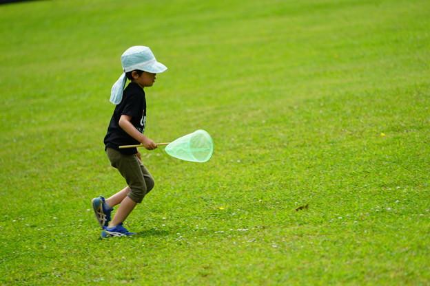 トンボとり網持つ少年