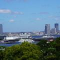 Photos: 港の見える丘公園からの景観
