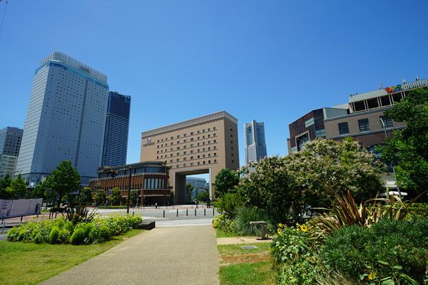新港中央広場