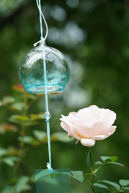 薔薇と風鈴