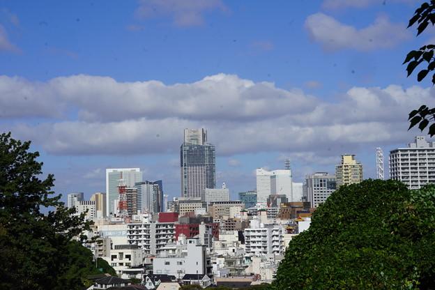 横浜市街風景