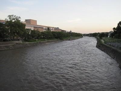 台風18号後の高野川 1