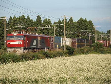 EH500 貨物 東北本線野辺地~狩場沢