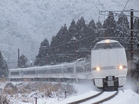 683系特急しらさぎ 北陸本線新疋田~敦賀