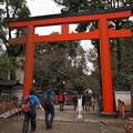 Photos: 八坂神社の鳥居