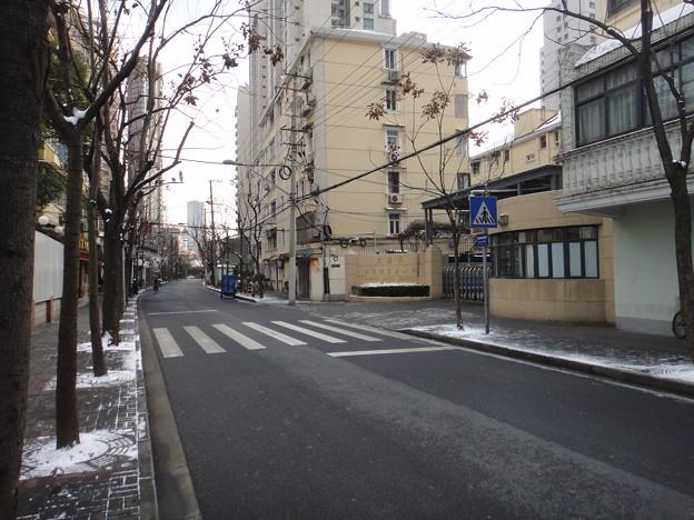 Photos: 前日の雪