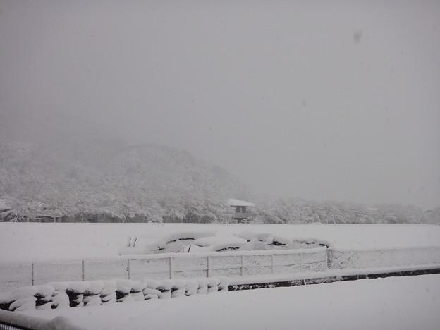 老家 雪景色の朝 堤防と車 1-10