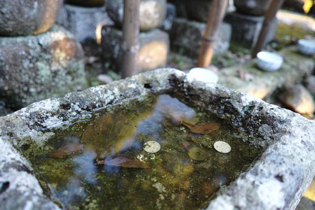 鎌倉フォトウォーク2012 - 杉本寺