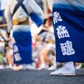 写真: 高円寺阿波踊り - 飛鳥連