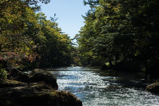 早秋の湯川
