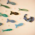 写真: お魚の競争