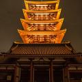 Photos: 五重塔ライトアップ