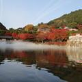Photos: 勝尾寺