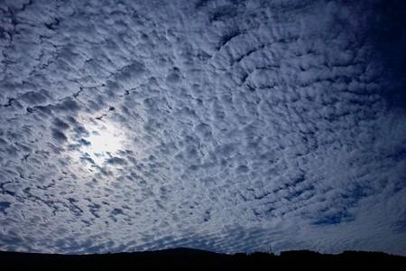 鱗雲だぁー