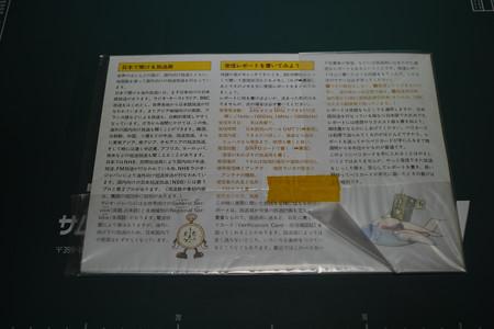 SDIM0427