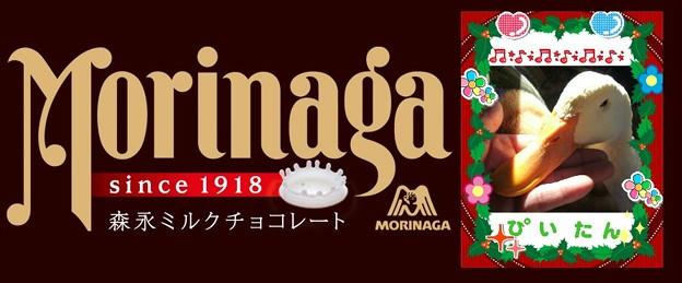 森永ミルクチョコ クリスマスパッケージ