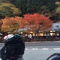 Photos: 日光付近の紅葉~2013秋
