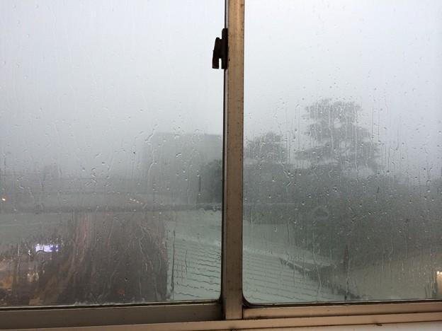 ゲリラ豪雨…汗