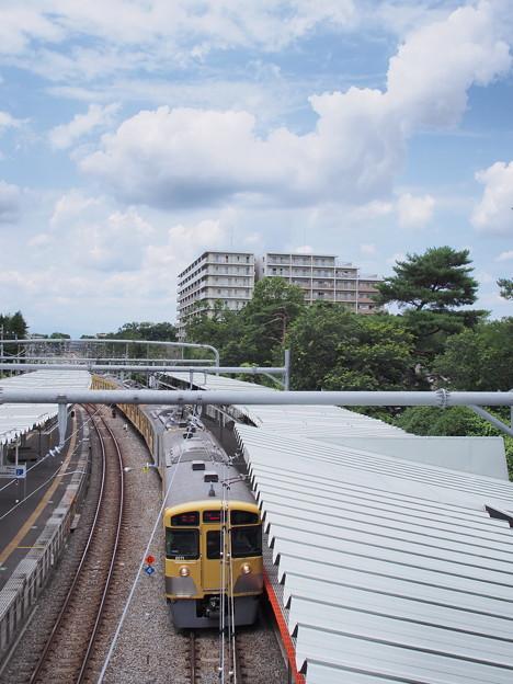 梅雨晴れと雲と木と電車