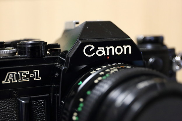 EF24-70mm F4マクロモードで試し撮り F4解放