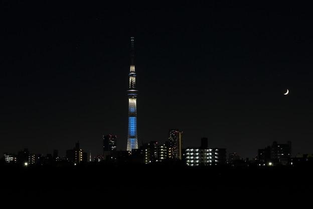 スカイツリー(&東京タワー)と三日月~トリミング