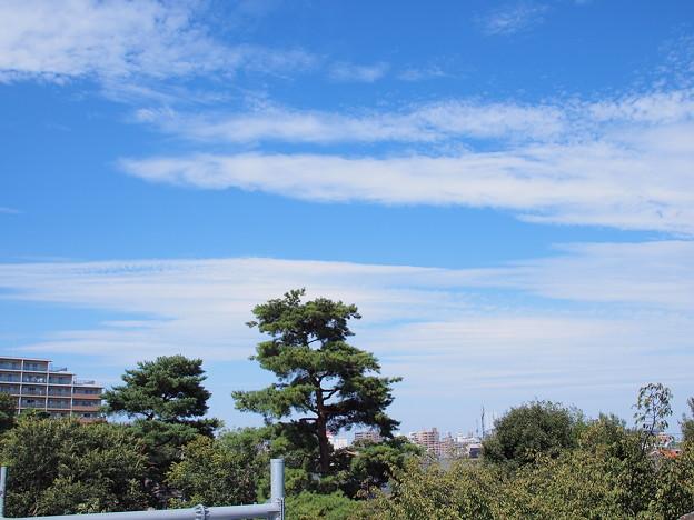 「今日の空」