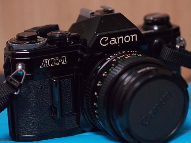 SIGMA 60mm f2.8 DN 試し撮り~手持ち…1