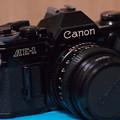 Photos: SIGMA 60mm f2.8 DN 試し撮り~手持ち…1