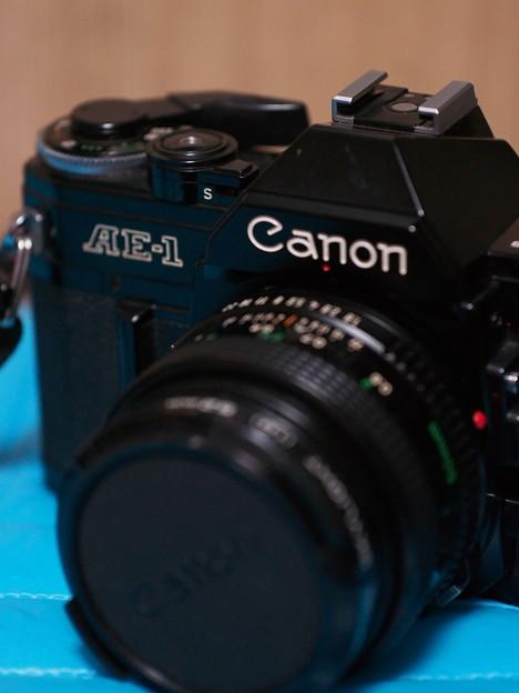 SIGMA 60mm f2.8 DN 試し撮り~手持ち…2
