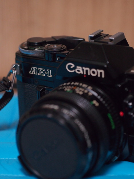 SIGMA 60mm f2.8 DN 試し撮り~手持ち…3