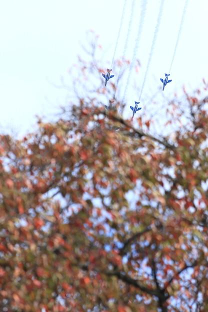 ブルーインパルスのアクロバット飛行~稲荷山公園より