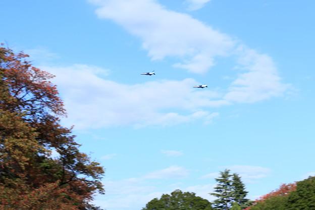 秋空とブルーインパルス編隊飛行