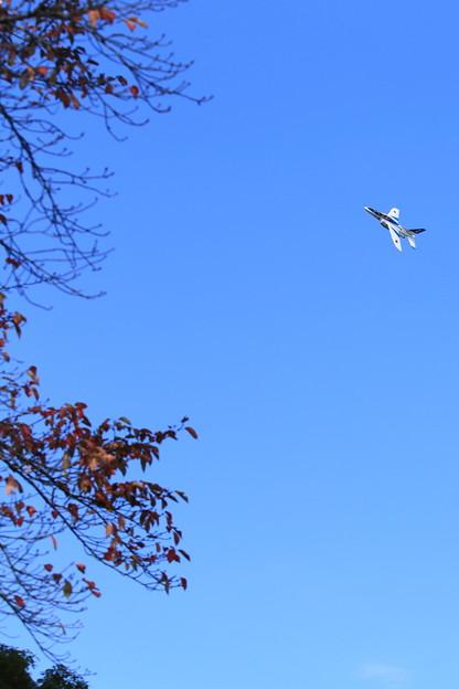 「ブルーインパルスと秋の空」
