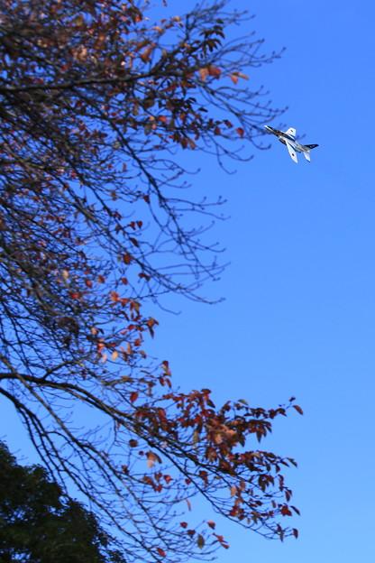 ブルーインパルスと秋の空
