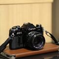 Photos: EF100mm F2試し撮り~手持ち撮影・縦位置・SS1/250