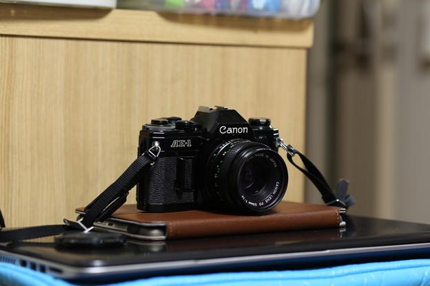 Photos: EF100mm F2試し撮り~三脚・F4で