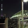 木根川橋とスカイツリーのライトアップ~2015.2.16