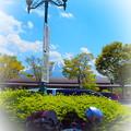 初夏の富士山~道の駅鳴沢にて